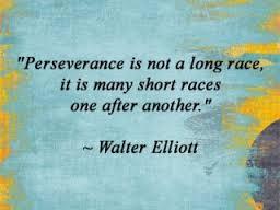 Perserverance Quote